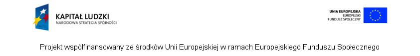 loga UE-poziom_kolor